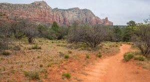 Hit the Trails and Hike the Sights of Arizona, Alma de Sedona Inn